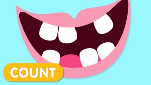 Count with teeth