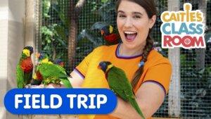 Field Trip to the Bird Kingdom