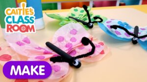 Make a Tissue paper Butterfly Craft