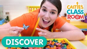 Find The Matching Butterflies in the Discovery Bin!
