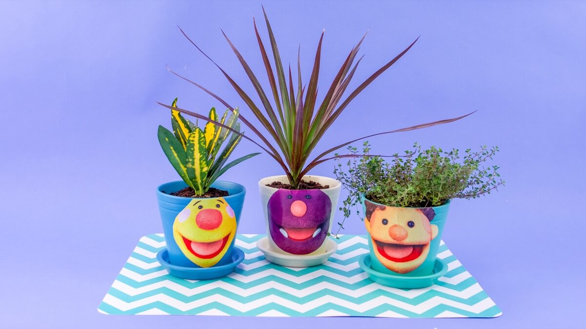 Super Simple Sprout Heads