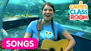 Sing The Baby Shark Song With Real Sharks At The Aquarium!