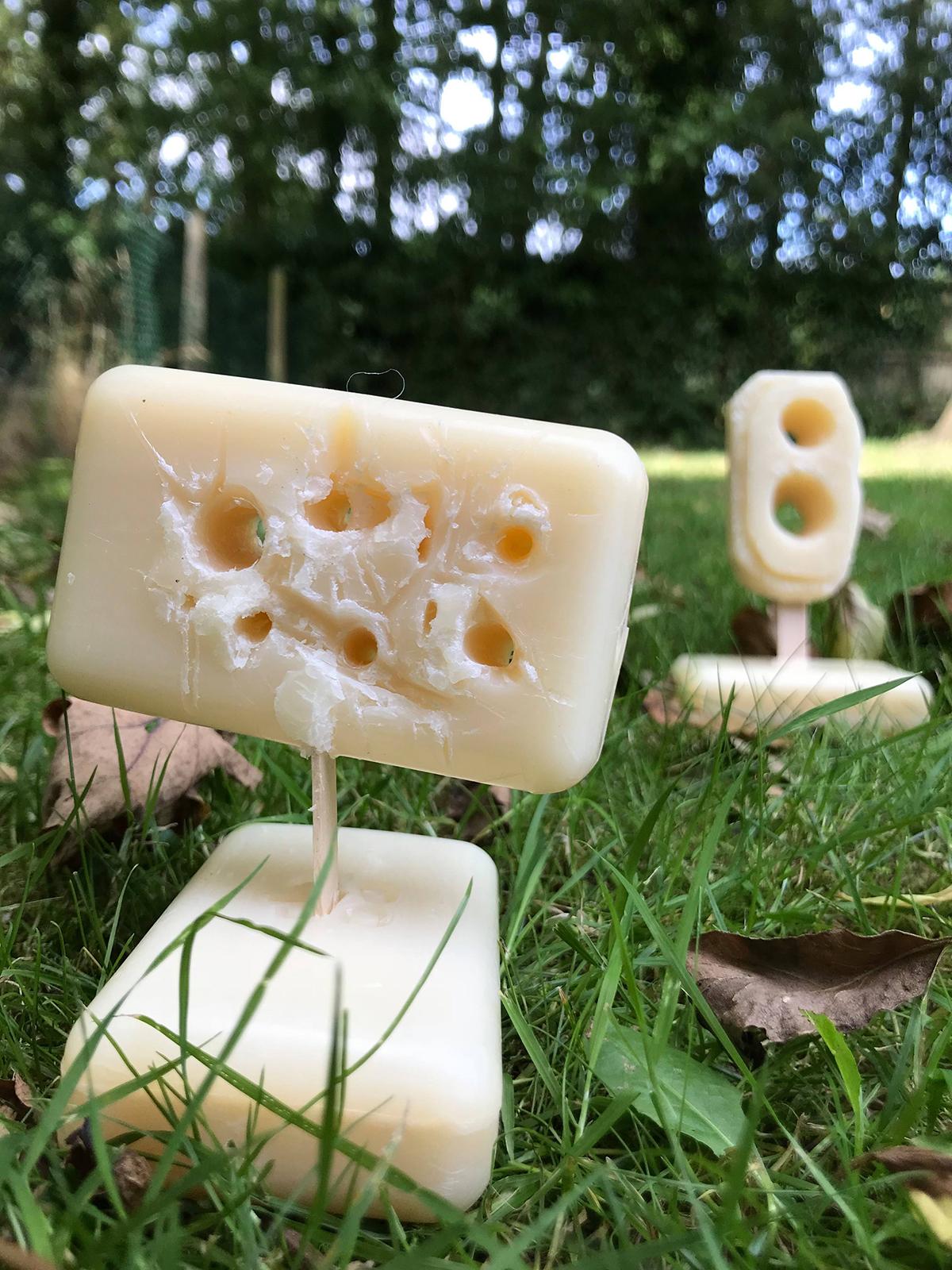 Soap Carvings