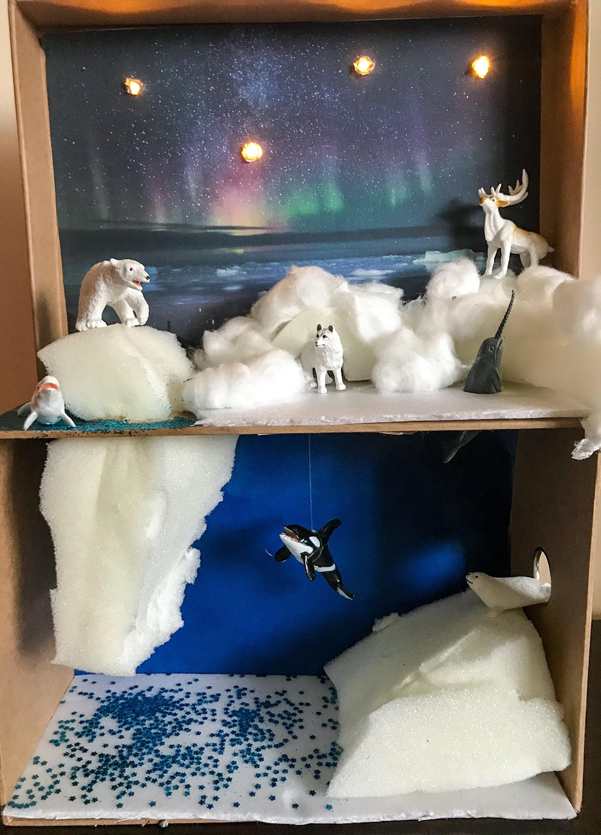 Arctic Habitat Diorama Super Simple