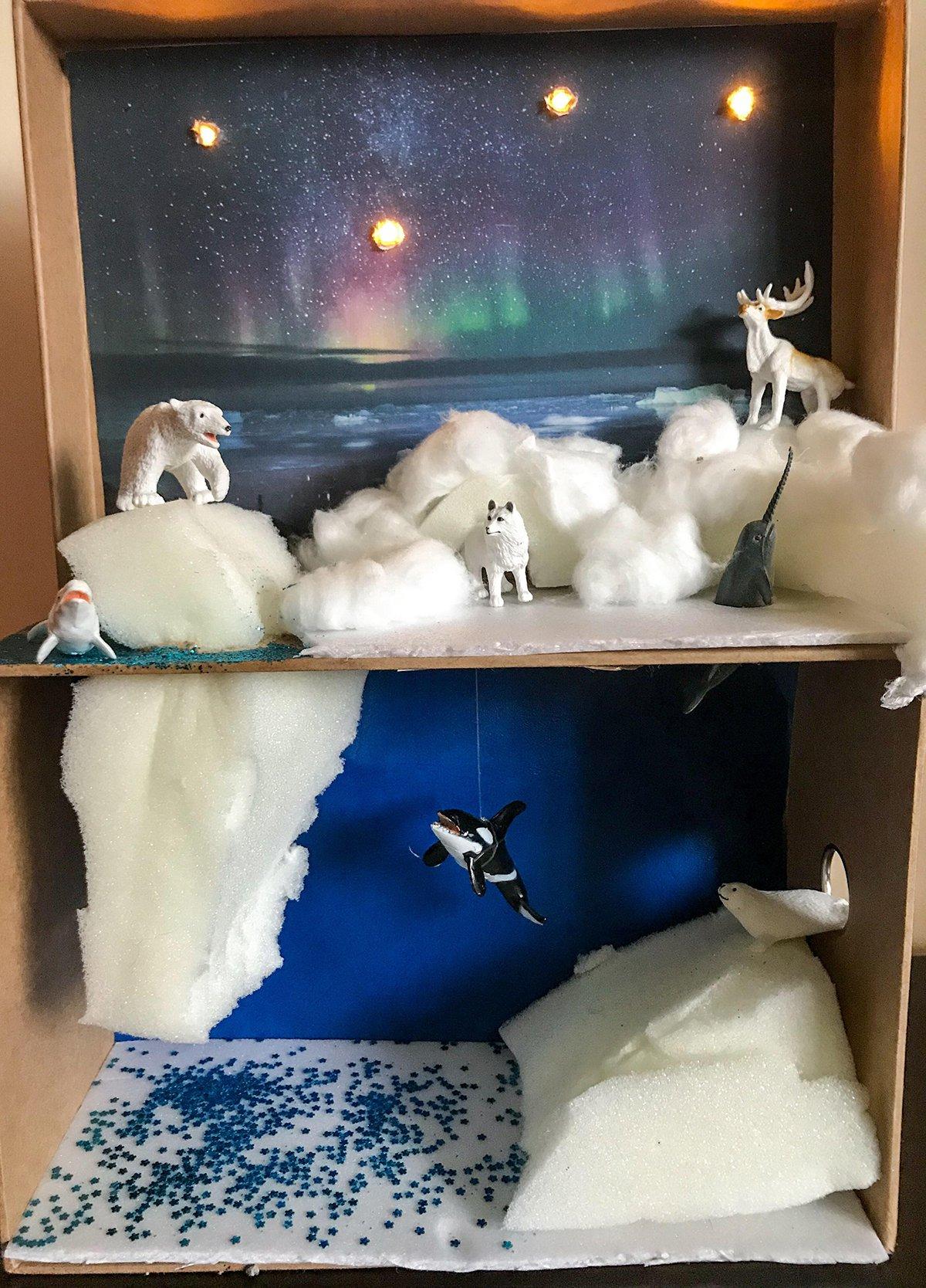 Arctic Cardboard Diorama