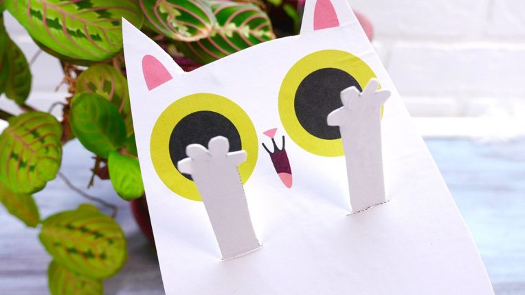 DIY Peekaboo Cat Puppet