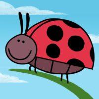 Butterfly, Ladybug, Bumblebee