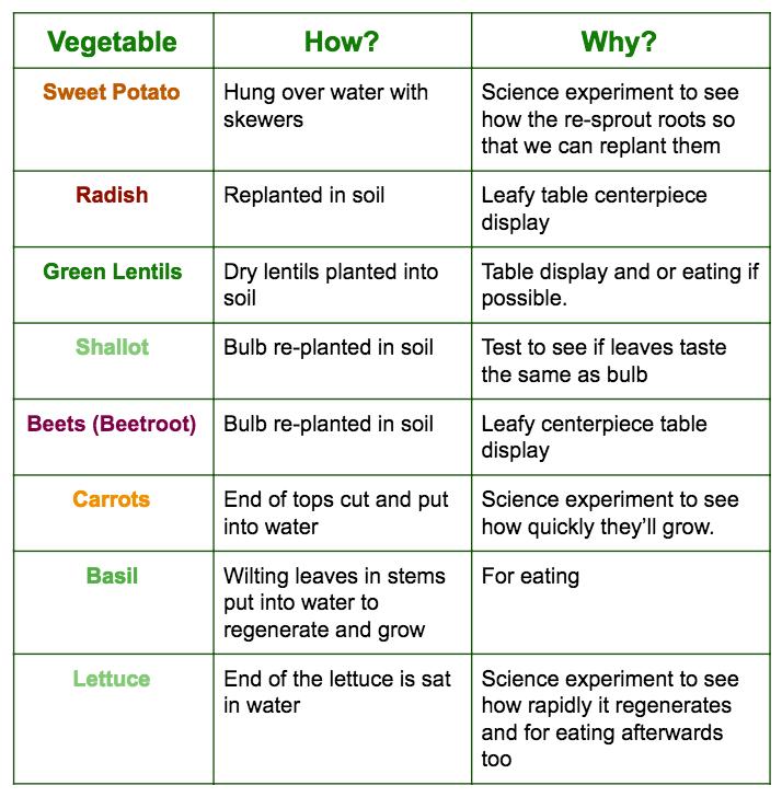 food regeneration using table scraps