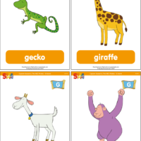"Captain Seasalt And The ABC Pirates ""G"" Flashcards"