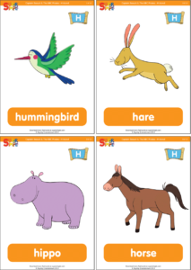 ABC Pirates H Flashcards