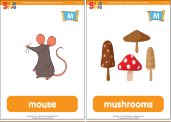 Flashcards - Super Simple
