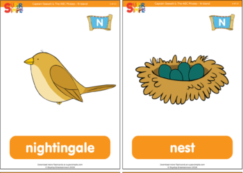 """Captain Seasalt And The ABC Pirates """"N"""" Flashcards"""