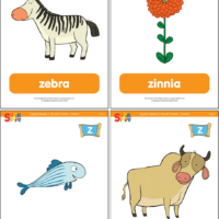 """Captain Seasalt And The ABC Pirates """"Z"""" Flashcards"""