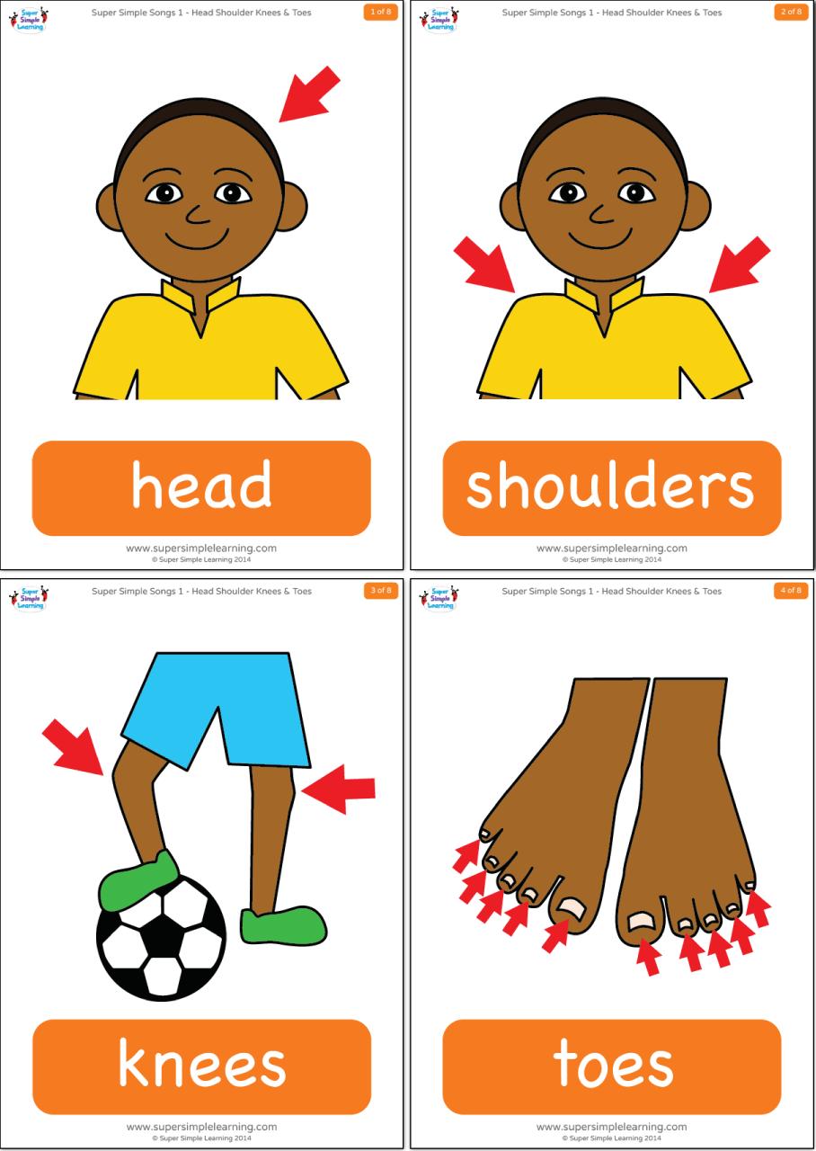 Head Shoulders Knees Toes Flashcards Super Simple