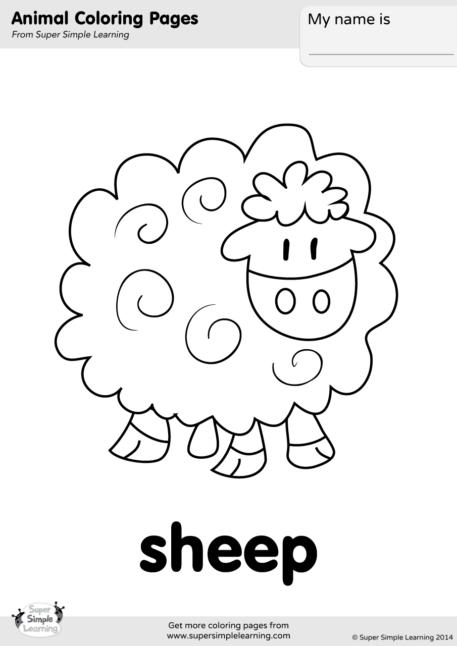 Sheep Coloring Page | Super Simple