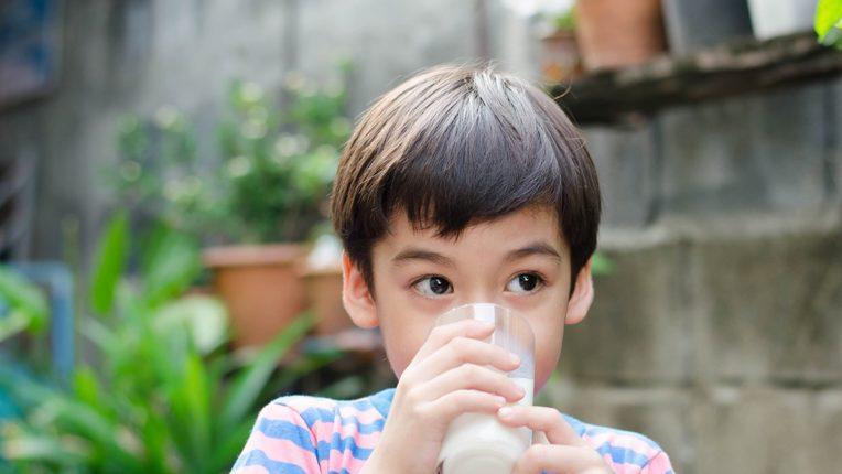 Holistic Milk Alternatives