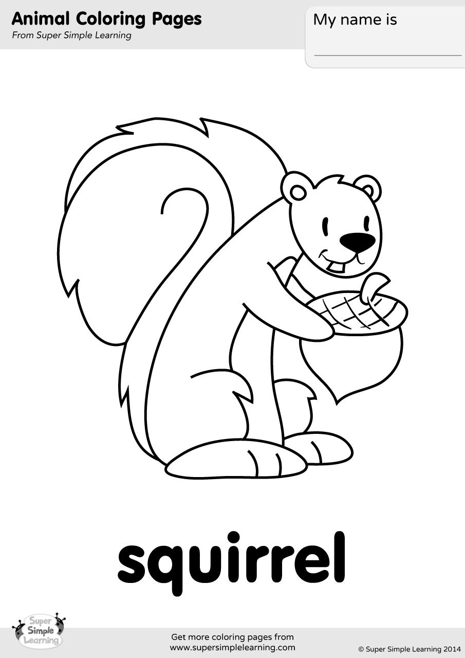 Squirrel Coloring Page | Super Simple