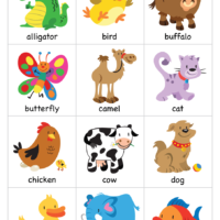 photo relating to Animal Cards Printable called Tremendous Easy Tunes - Pets - Comprehensive Flashcards - Tremendous