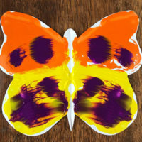 Butterfly Symmetry Activity