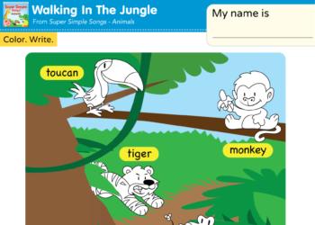 Animals Jungle Animals Super